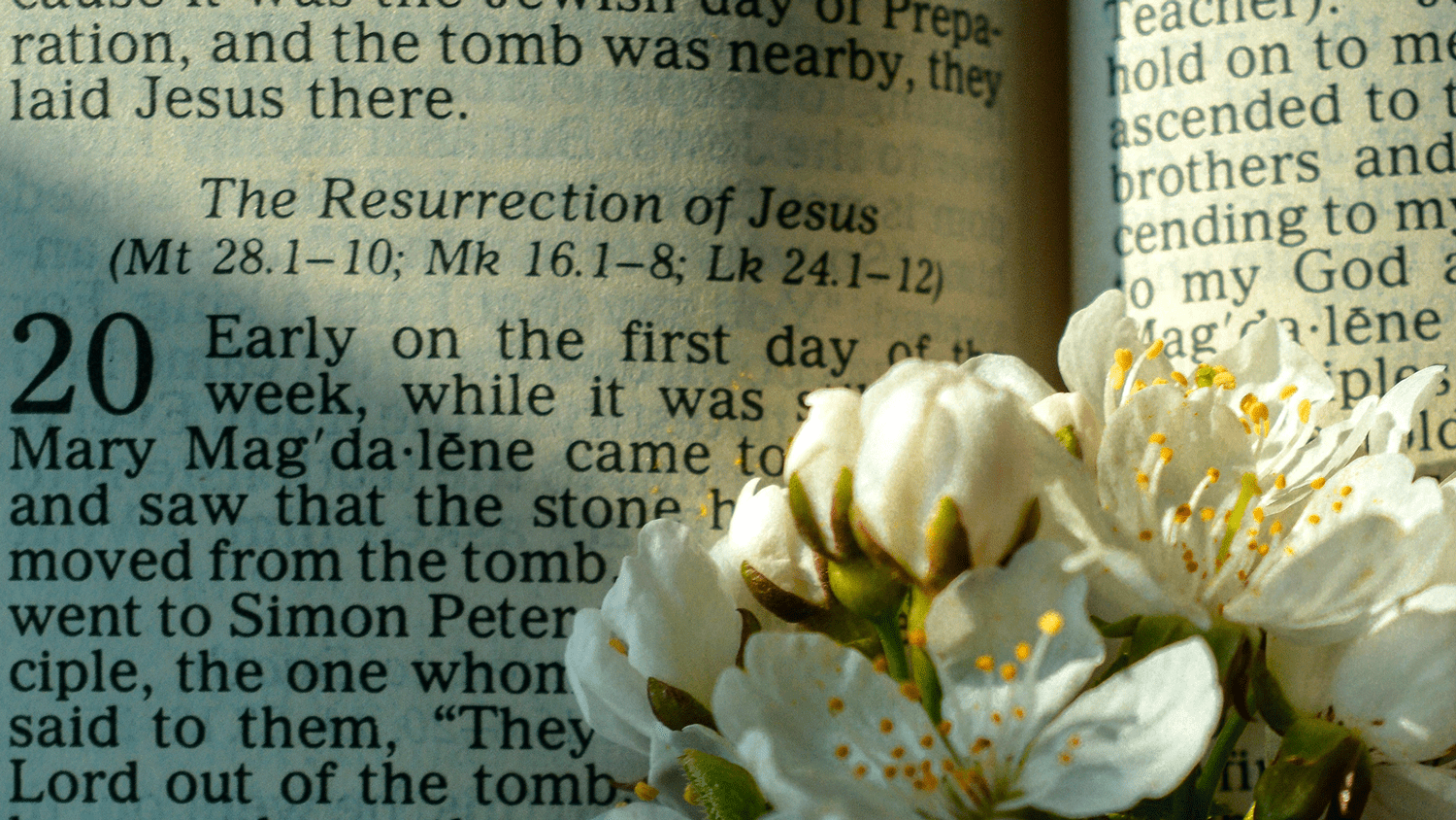 An image of a Bible open at the story of the Resurrection of Jesus.